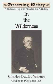 In the Wilderness (1878)
