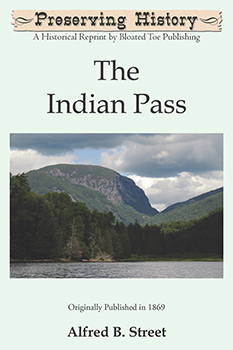 The Indian Pass (1869) by Alfred B. Street